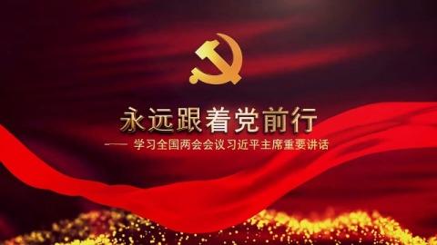 大气红色党建党政宣传片