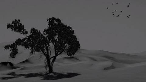 鸟群与枯树,有意境的复古黑白开场动画