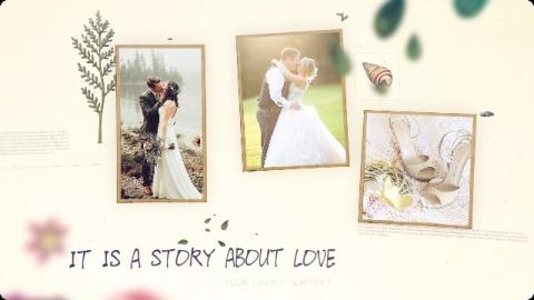 自然清新植物主题婚礼爱情生活相册